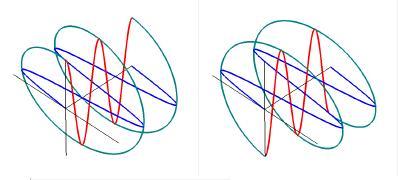左右円偏光