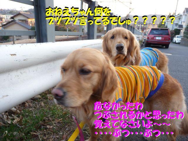 002_20100210020235.jpg