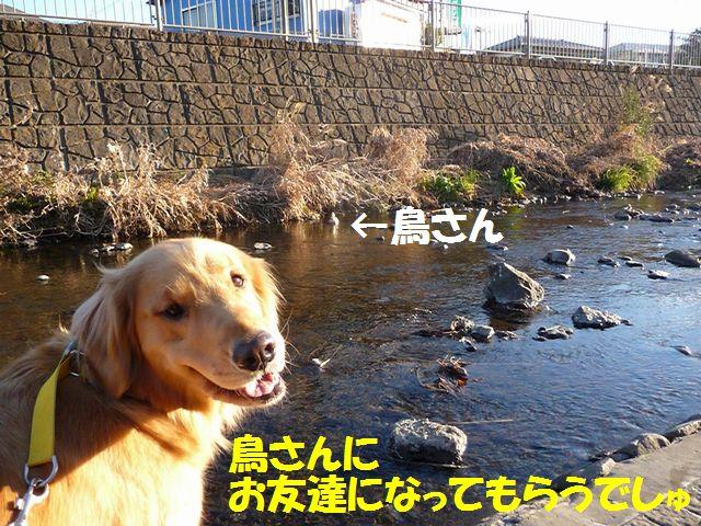 020_20100124184944.jpg