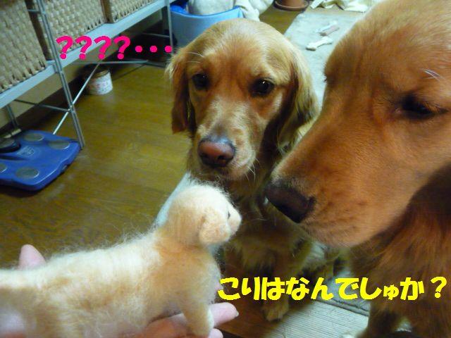 020_20100305232841.jpg