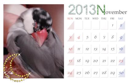 カレンダー:2013.11