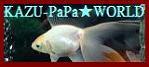 「本館ウェブリブログ」【KAZU-PaPa -金魚&磯釣り- WORLD】 へ