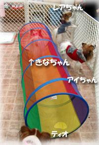 2010-01-16 14;25_DSC07731