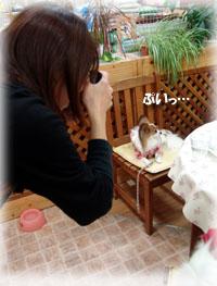 2010-01-16 15;15_DSC07775 -200