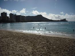 ハワイ 265