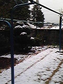 100309我が家の庭の初雪