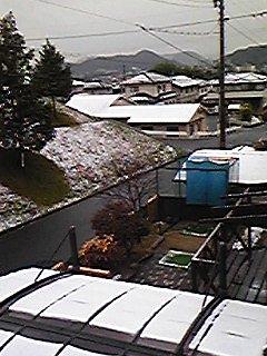 100309ご近所の初雪