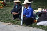 雲南石林水煙草
