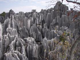 雲南旅行昆明石林