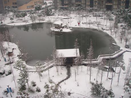雪のマンション庭