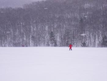 森学 問牧歩くスキー (4) (350x263)