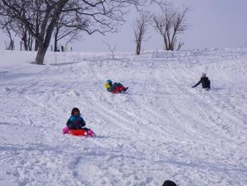 森学 問牧歩くスキー (65) (350x263)