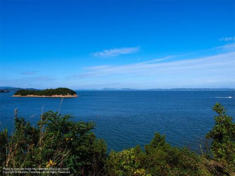 高い場所から瀬戸内海を望む