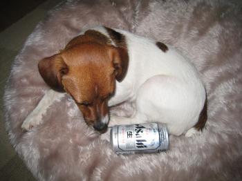 缶ビールとピート