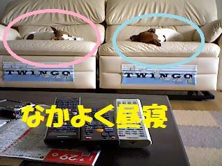 Snapshot_2011_9_30_10_41_43