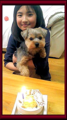 うみちゃん誕生日