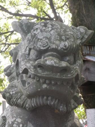 諏訪神社42cca