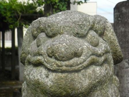 井手神社木守4