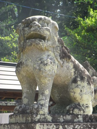 五の宮神社森1