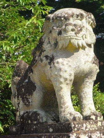 五の宮神社森2
