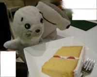 cake201002-2