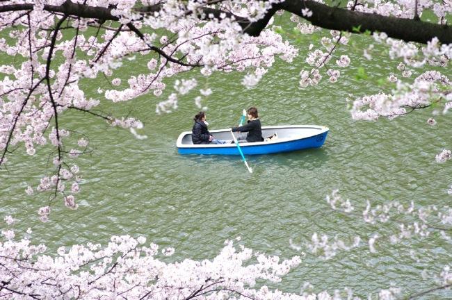 '10桜10