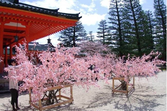 '10桜106