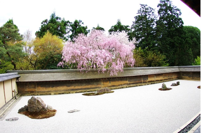 '10桜109