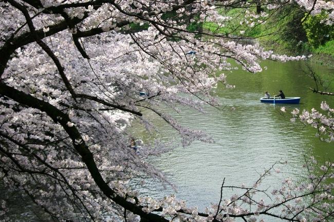 '10桜17