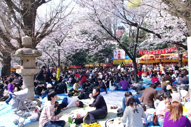 '10桜23
