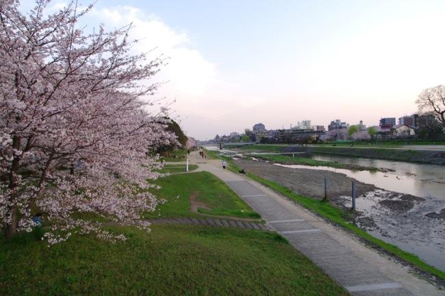 '10桜58