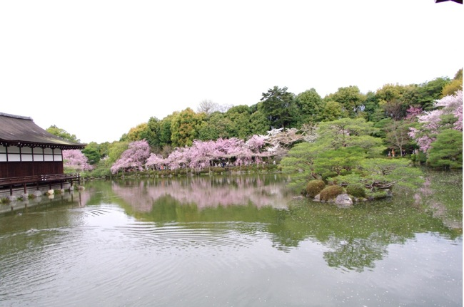 '10桜97