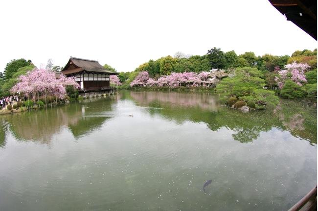 '10桜98