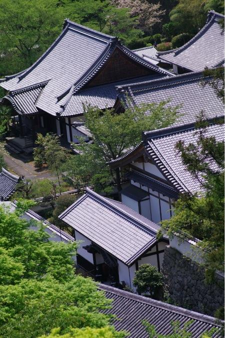 京都奈良真春103