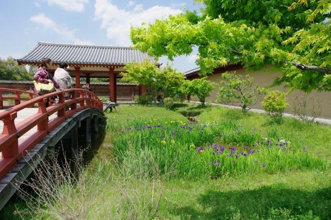 京都奈良真春17