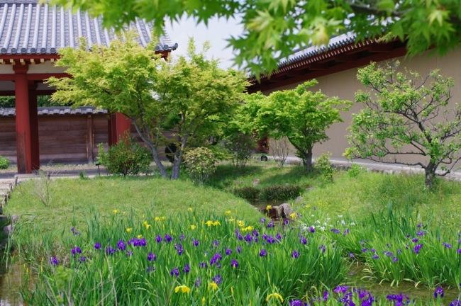 京都奈良真春18