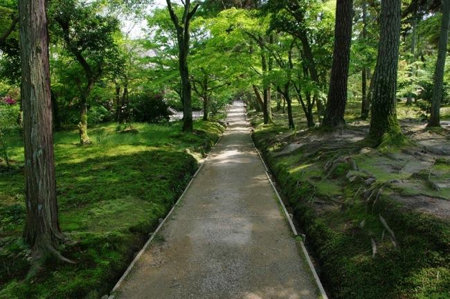 京都奈良真春35