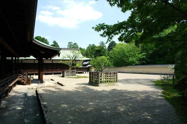 京都奈良真春39