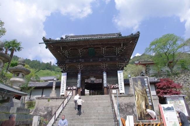 京都奈良真春61