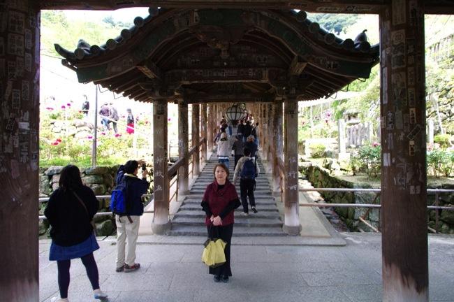京都奈良真春62
