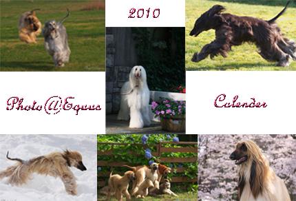 calender2010