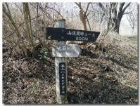 幕山ハイキングコース-3-