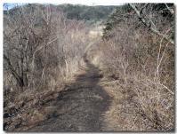 幕山ハイキングコース-4-