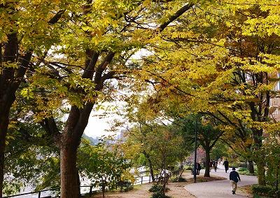 広島の秋 20