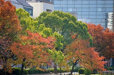 広島の秋 2