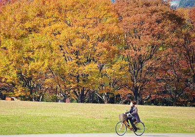 広島の秋8
