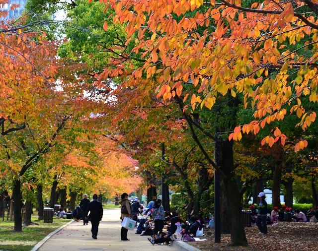 広島の秋14