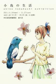 小鳥の生活