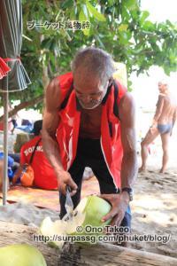 この記事「プーケット バナナビーチの椰子の実」の写真 (365-500)