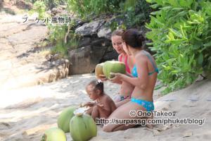 この記事「プーケット バナナビーチの椰子の実」の写真 (365-506)